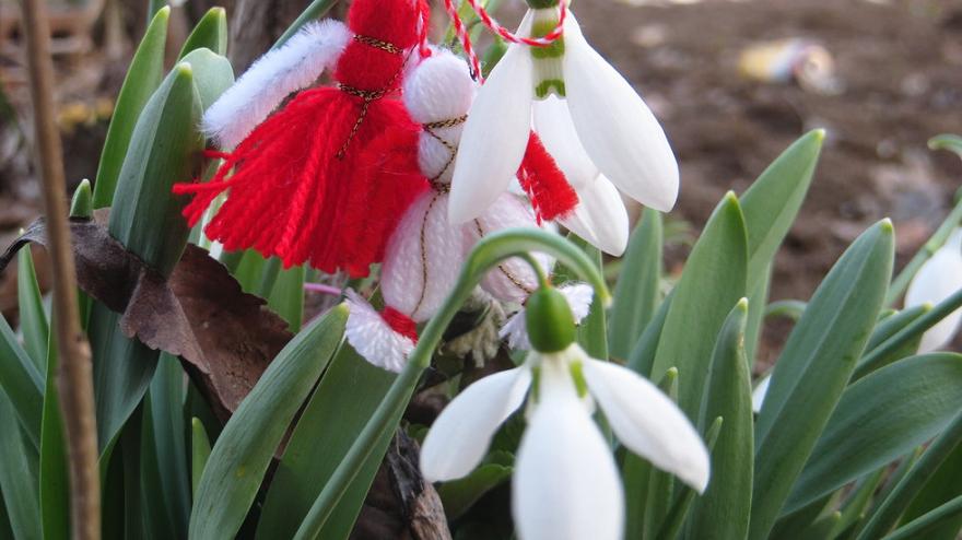 На 1 март българите се окичват с мартеници. За здраве