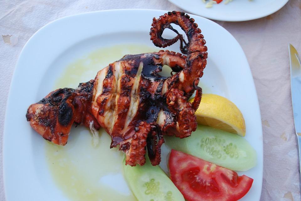 octopus(3)