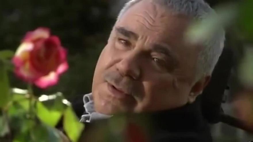 али-ръза халил ергюн